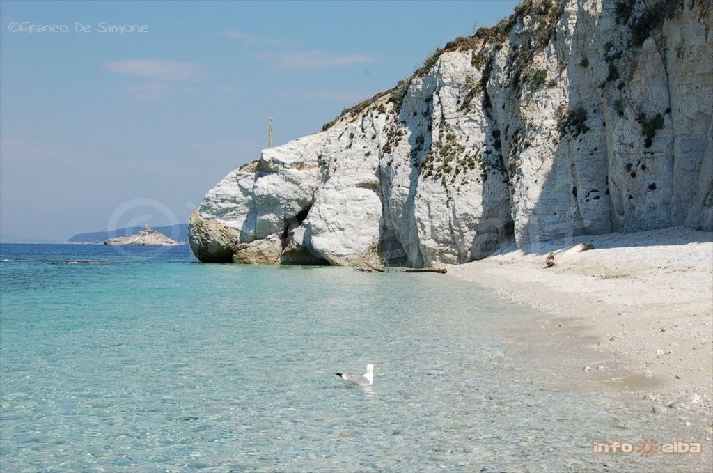 Permalink to Isola D Elba Appartamenti