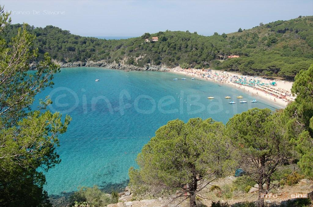 Appartamenti Isola D Elba Fetovaia